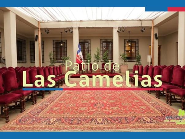 Vías de evacuación Patio Las Camelias